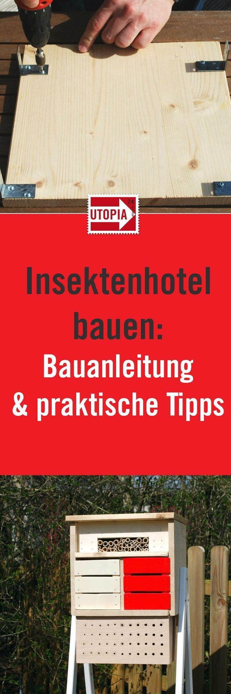Insektenhotel bauen: Bauanleitung und Tipps - Utopia.de