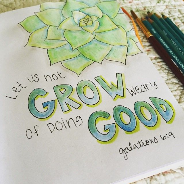 Sketchbook page with Galatians 6:9 hand lettered and a succulent sketch in watercolor pencil by Nancy Ingersoll
