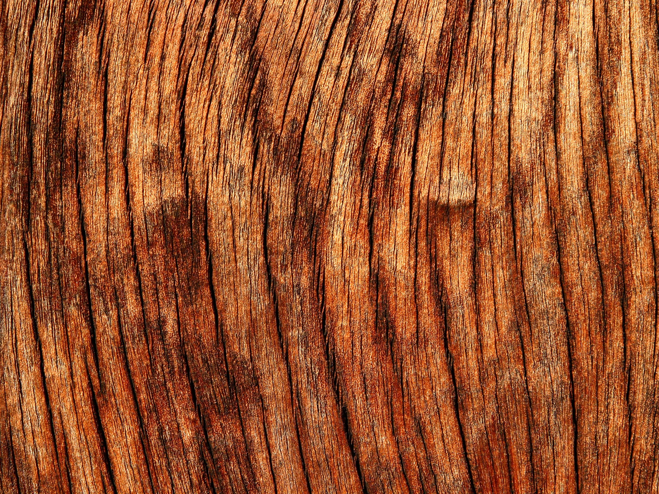 Download texture wooden boards background wood