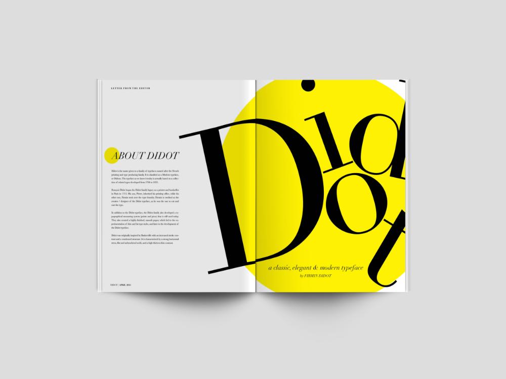 Didot Vania Lin In 2020 Didot Books Modern Typeface
