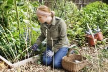 inner city urban allotment gardening project - John Rensten/Digital Vision/Getty Images