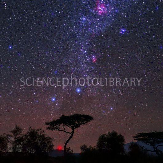 Night sky over Kenya | Night skies, Sky, Kenya