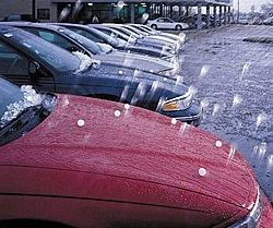 Boca Raton Public Insurance Adjuster Call Now Hail Damage Car