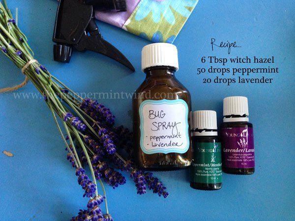 Diy Natural Bug Spray Using Witch Hazel Peppermint And