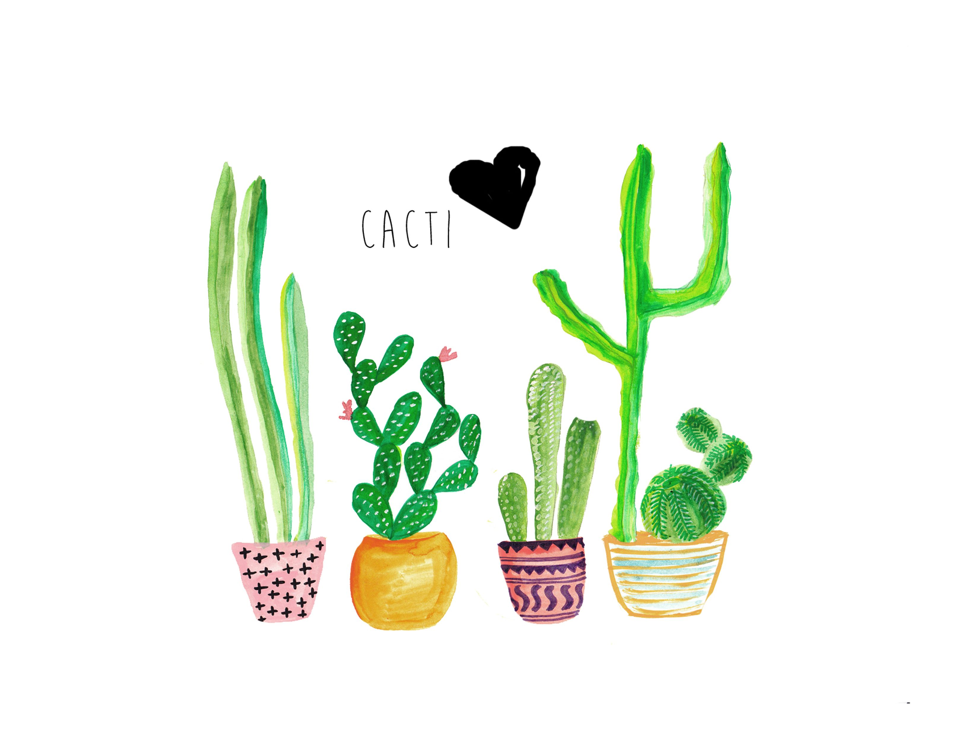 Cacti Artprint 1 Jpg 3300 2550 Cactus Backgrounds Cute