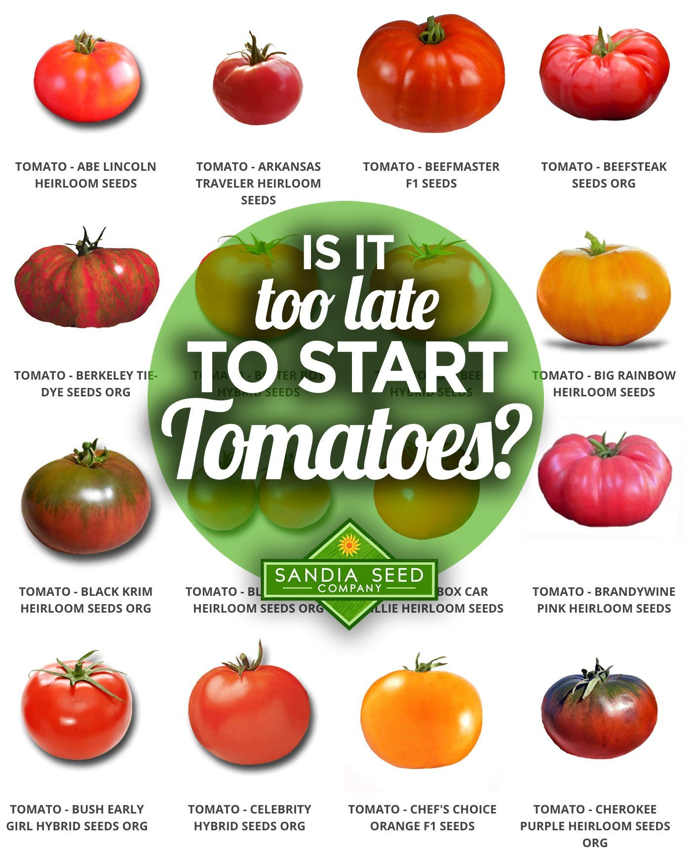 Definitely Not You Can Plant Tomato Seeds Anytime In The Spring