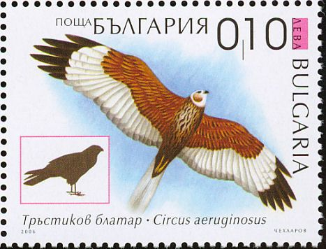 Western Marsh Harrier stamps - mainly images - gallery format