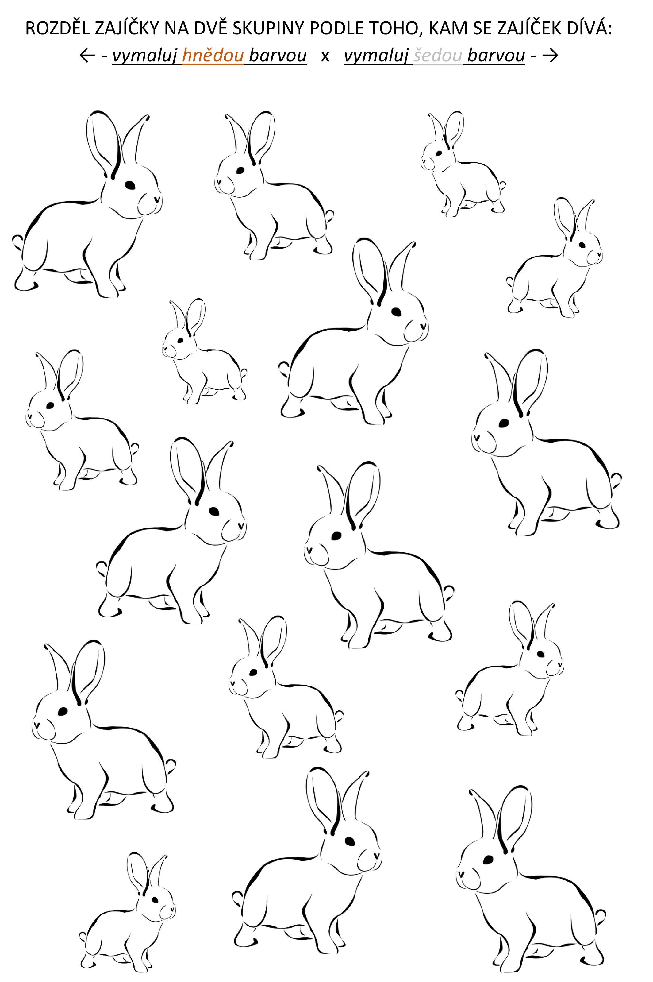 Pracovní list pro děti Zajíc | Art, Math, Centrum