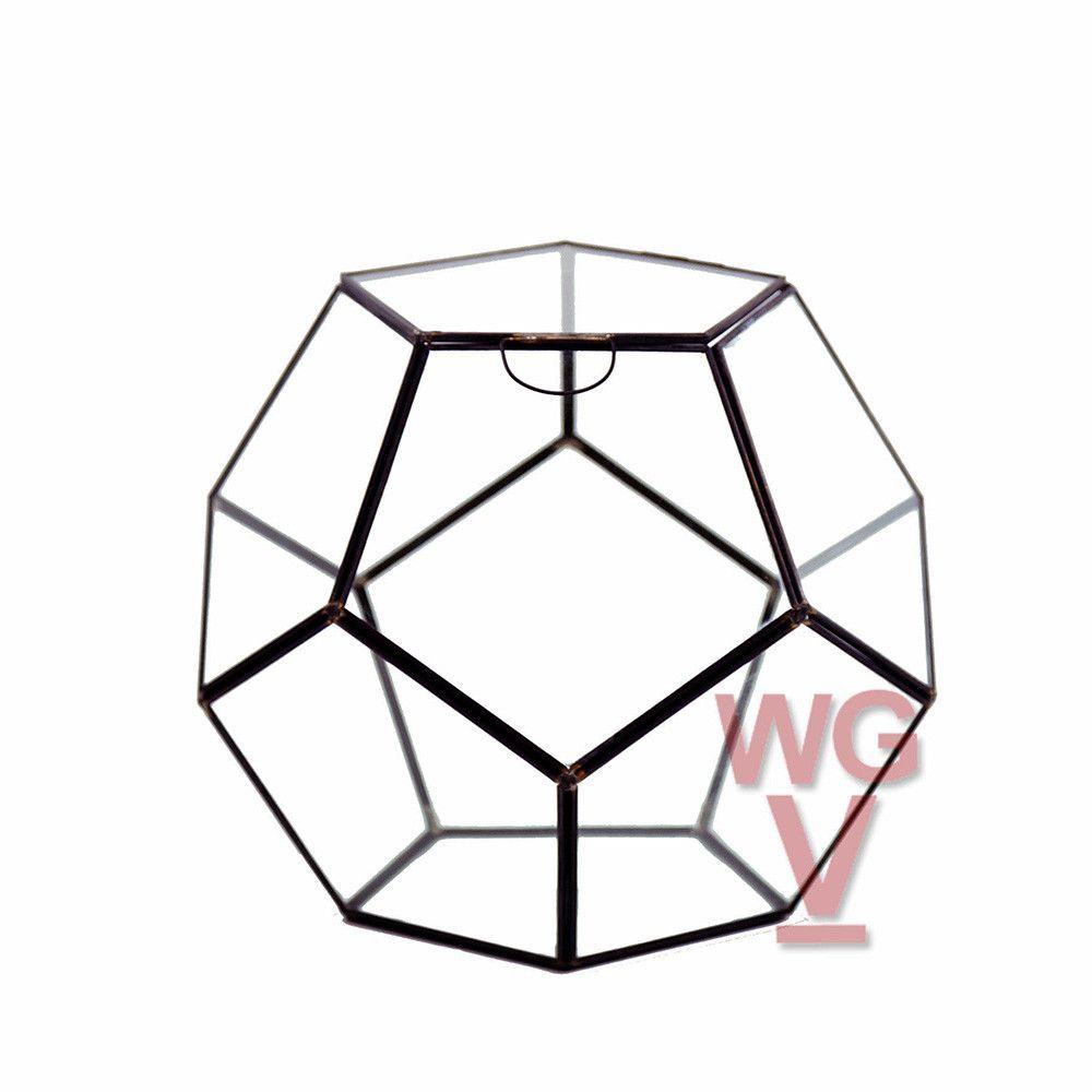 Dodecahedron Terrarium