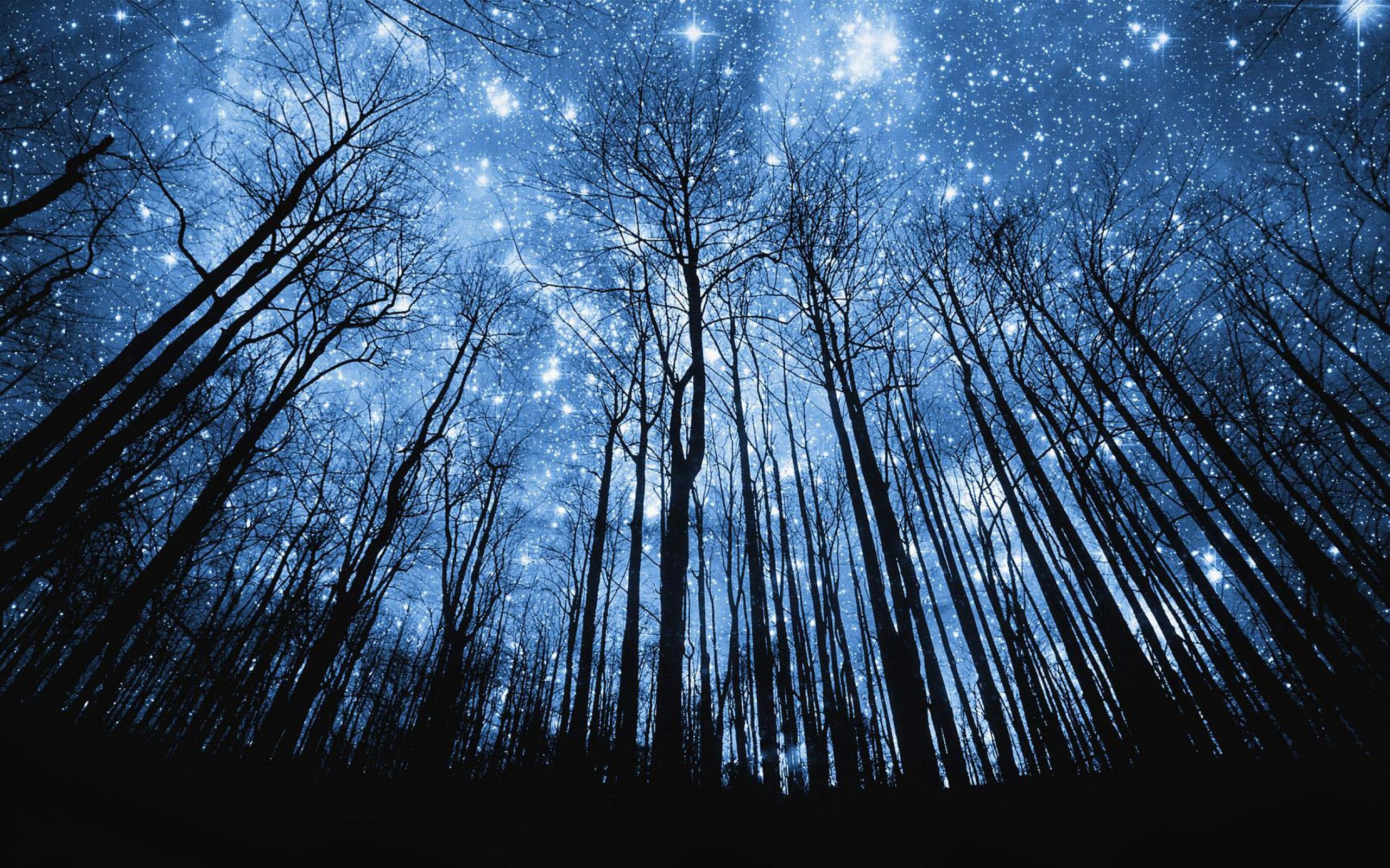 beautiful night sky with shooting stars - wallpaper. | painting