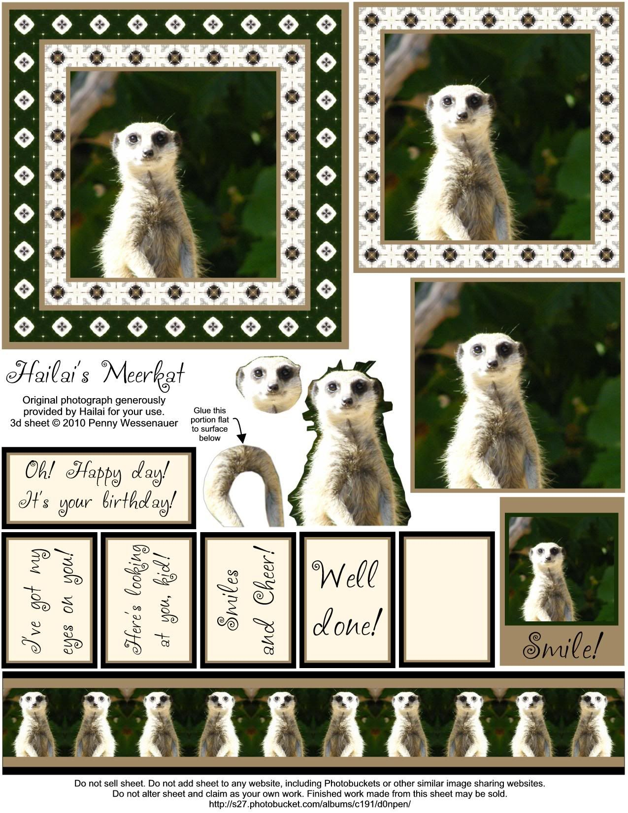 Hailais Meerkat Photo This Photo Was Uploaded By D0npen Find Other