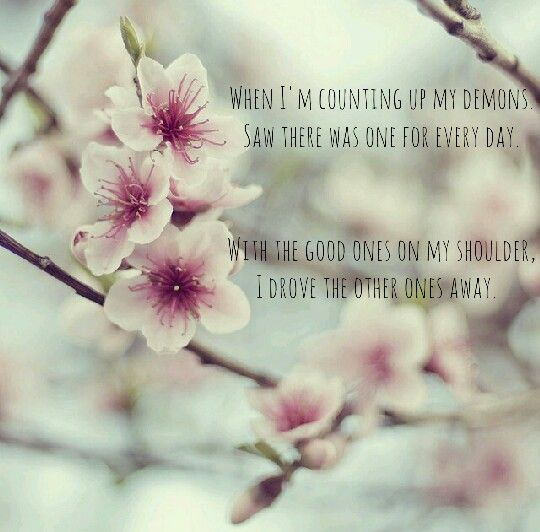 Everything S Not Lost Coldplay Cherry Blossom Blossom Cherry Blossom Tree