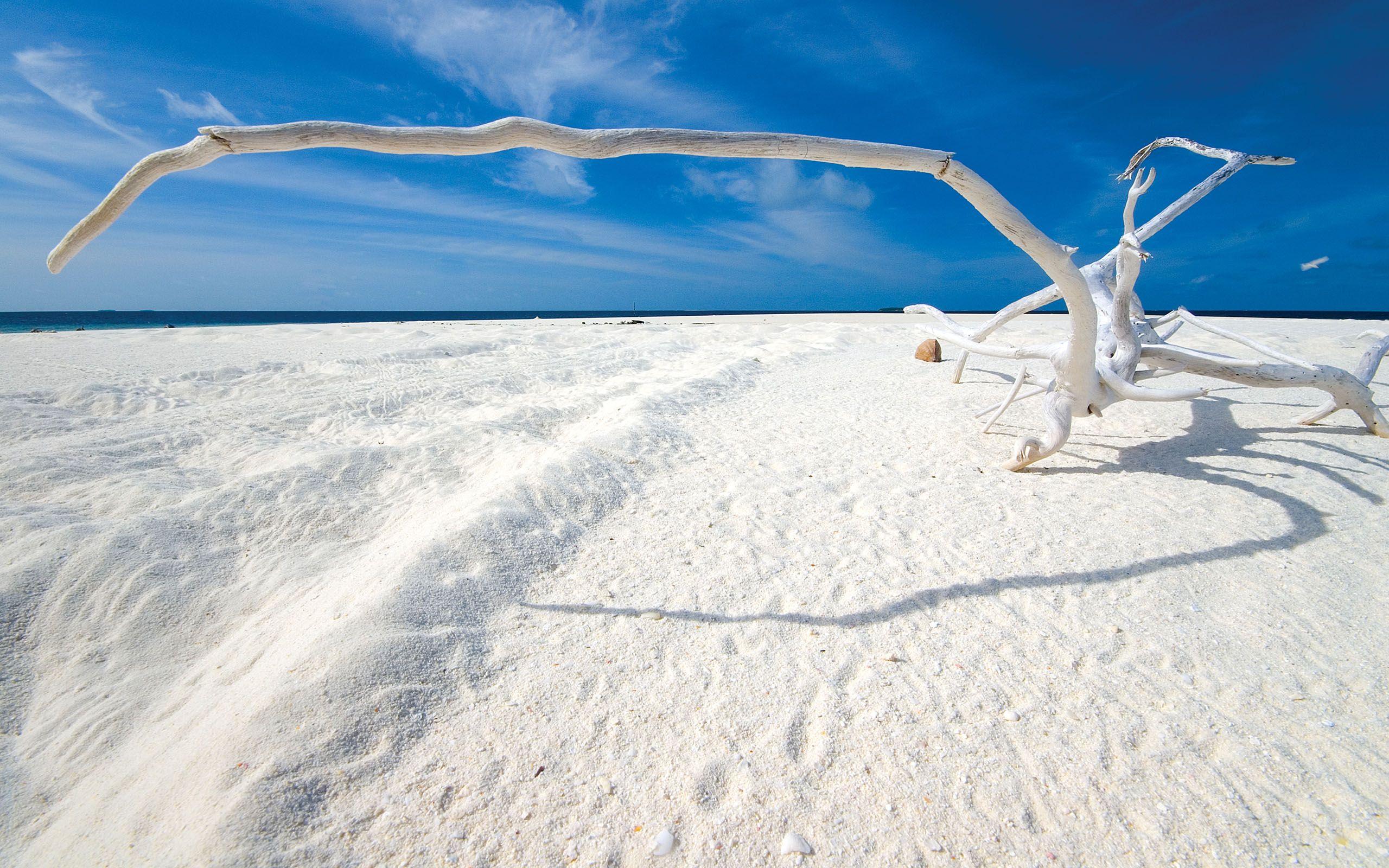 White Sand Beaches Deadwood White Sand Beaches Maldives Top