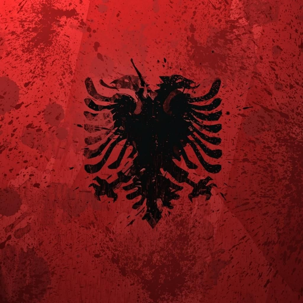 Albanian Flag Albanian Flag Colorful Backgrounds Albania Flag