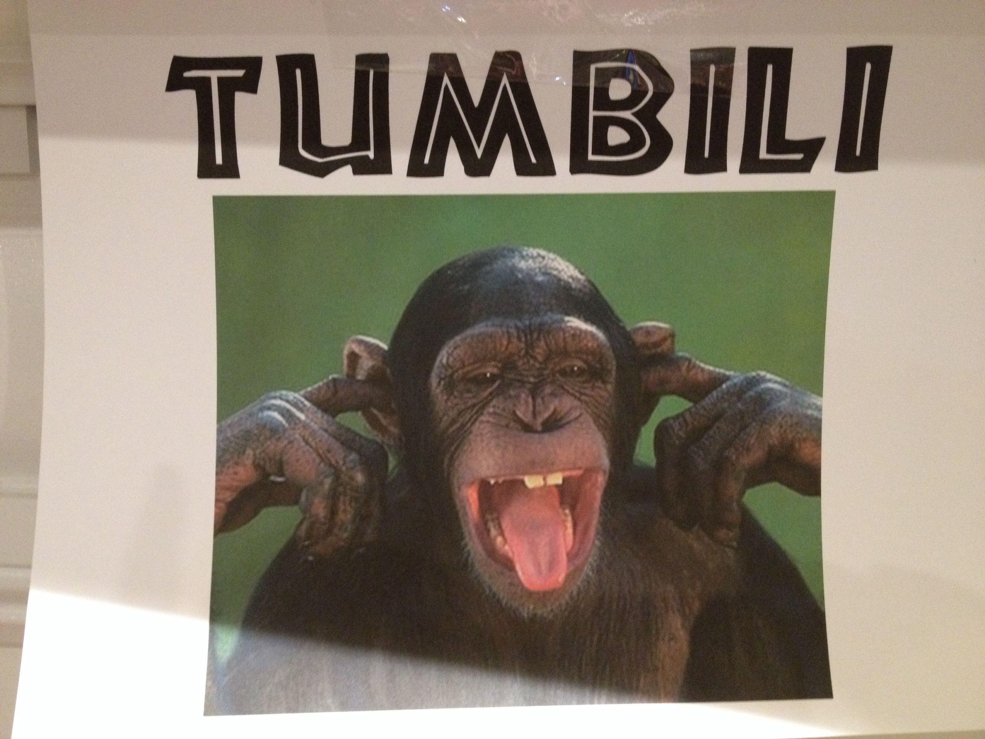 Tumbili team