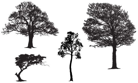 Free Vector Sample Pack of Realistic Tree Silhouettes | Wedding ...