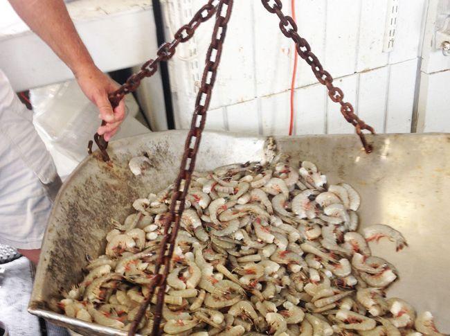 Seafood Restaurant Hudsons Hilton Head Island South Carolina