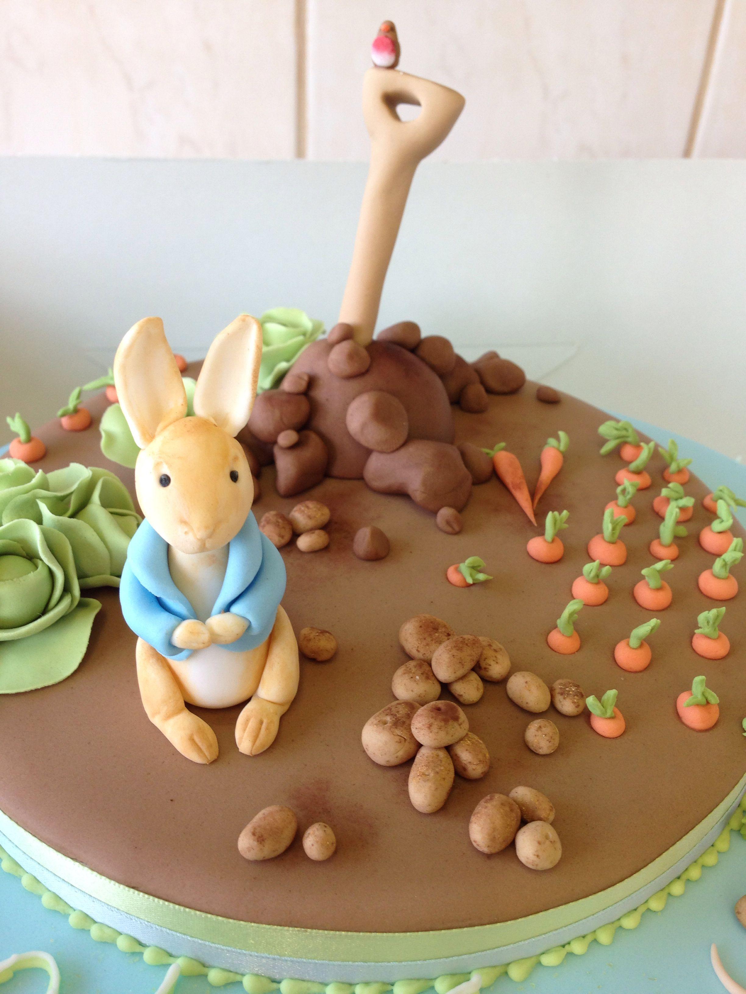 Peter Rabbit Cake Topper Nz