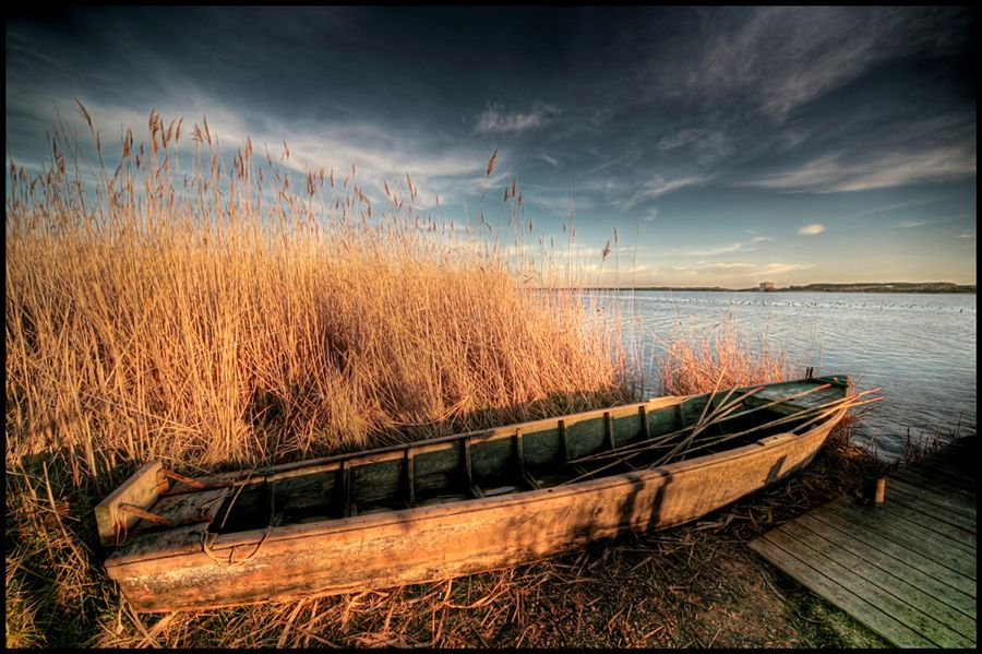 Golden Boat de Massimo Carolla