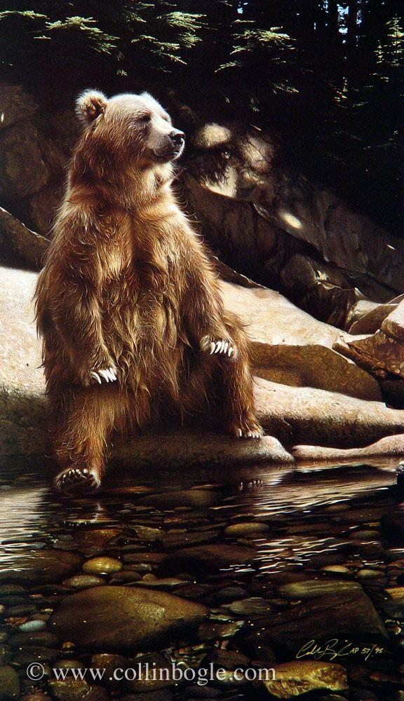 Cool Foot - Bear #bears