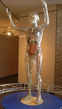 Cleveland Health Education Museum | Cleveland Museum of Natural History