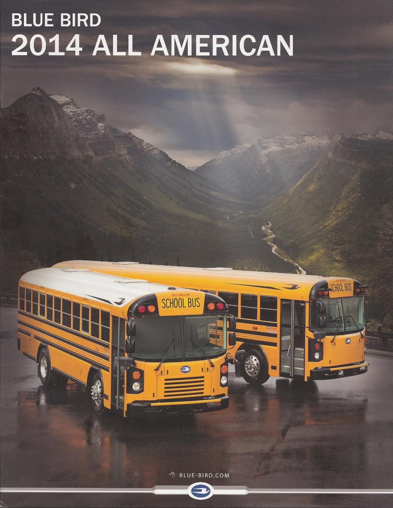 School Bus Driver, School Buses, Blue Bus, Bus Conversion, Jdm, Brochures