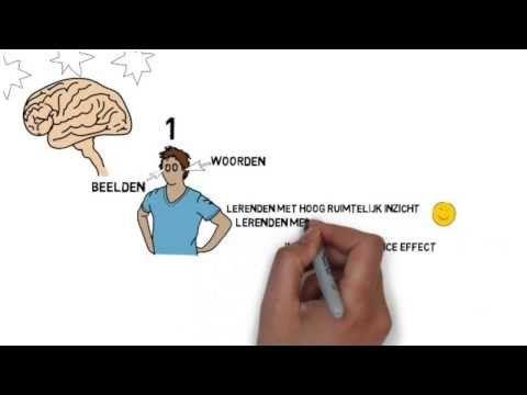 Multimedia Learning theorie van Mayer