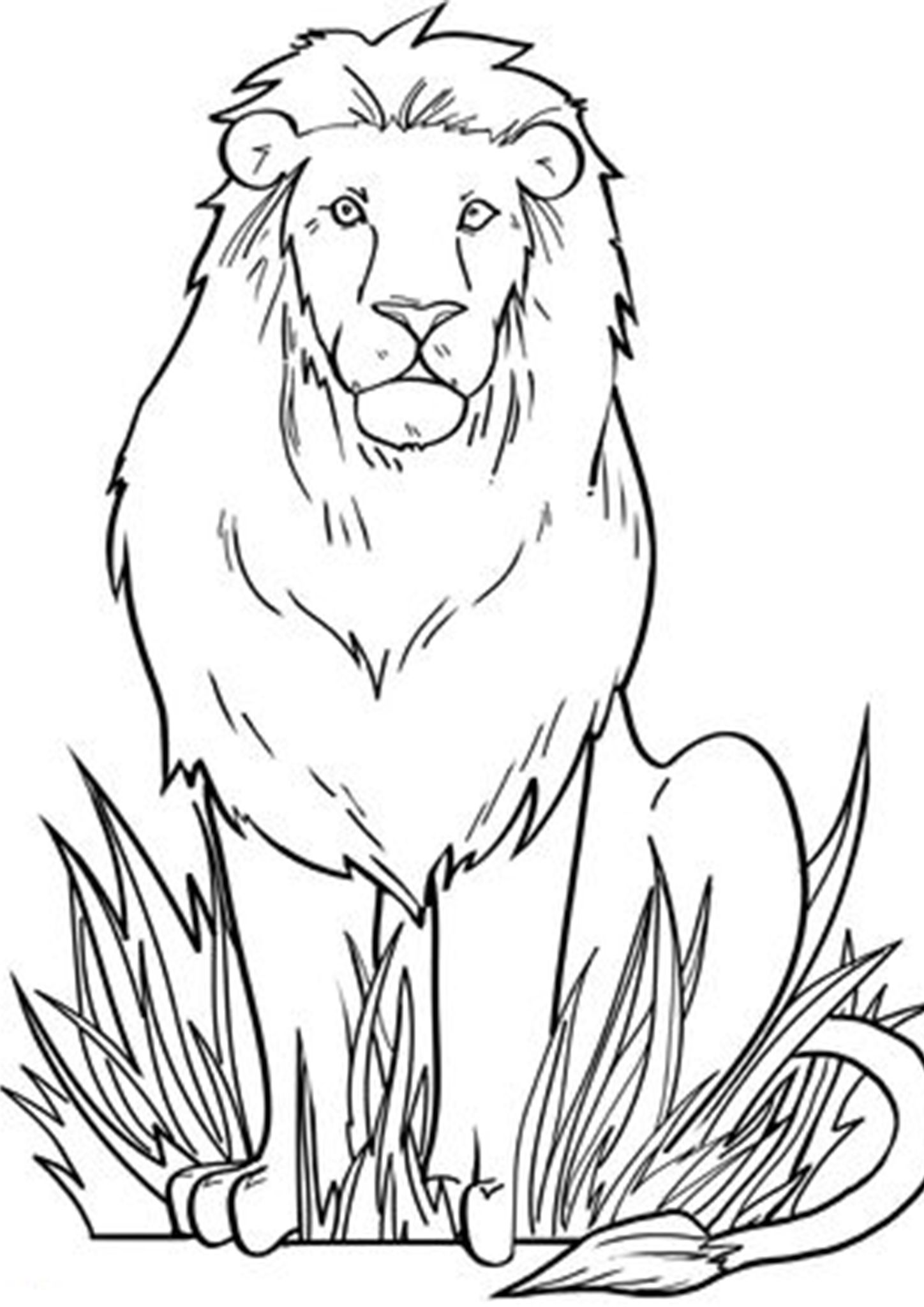 Free Amp Easy To Print Lion Coloring Pages In