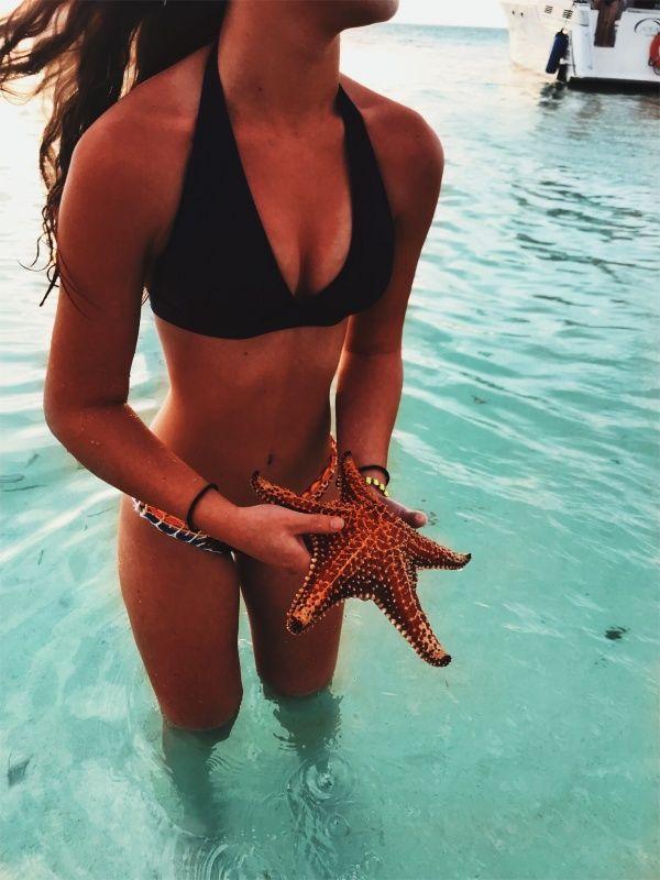 #bikini #swimsuit #bathingsuit #summer #summerstyle #summerfashion #summertime #summervibes #summeroutfits #summeraesthetic #cute #tumbler #tropical #beach #ocean #starfish