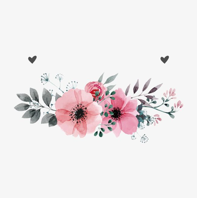 Flores De Color Rosaflorpintado A Mano De Las Plantasdiagrama