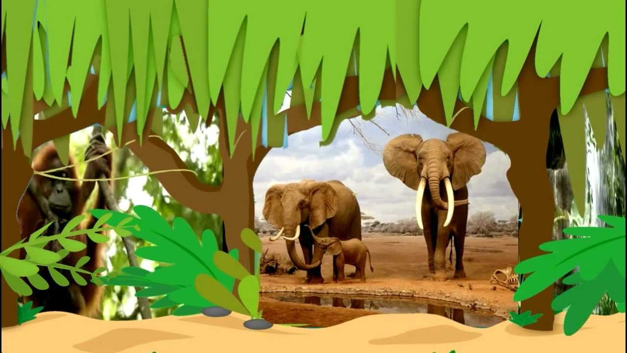 Jungle Animals | Earth Day Songs for Children, via YouTube ...