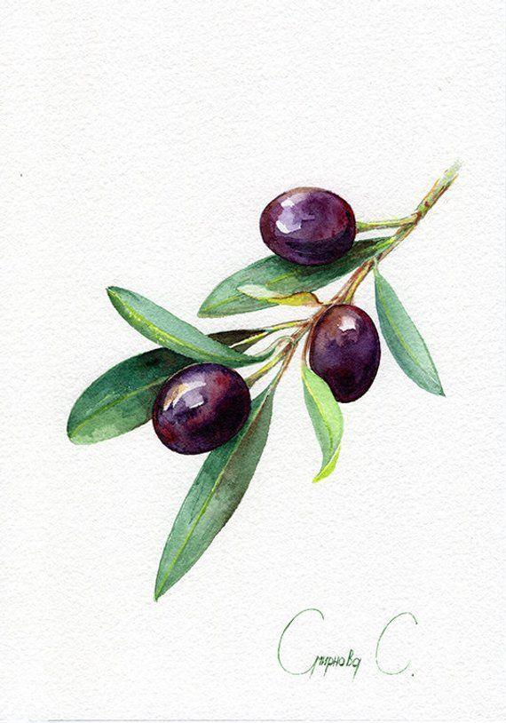 Olive, baies, jaune, bleu, vert, aquarelle peinture originale de l'artiste, Art et Co ...