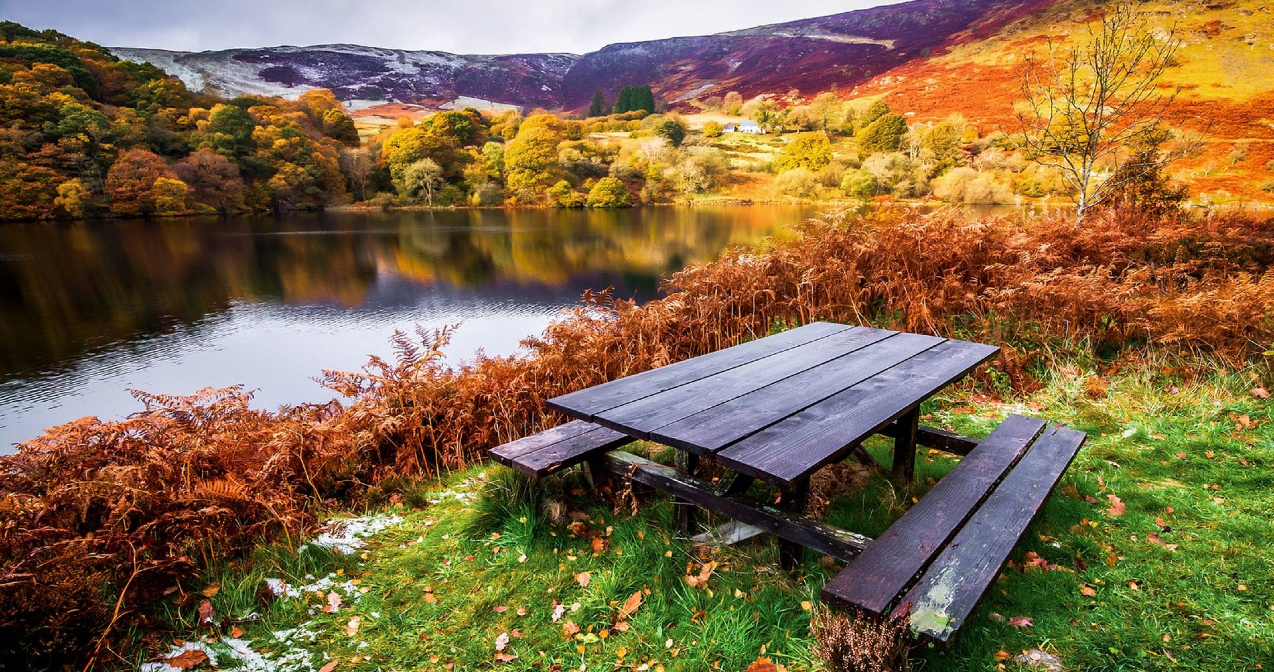Table In Nature 4k Ultra Hd Wallpaper Landscape Wallpaper Picnic Bench Nature Wallpaper
