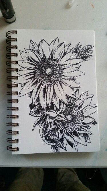 Sunflowers Done With Fine Point Sharpie Pen And 7mm Bic