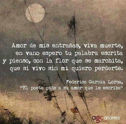 Federico García Lorca Escribir Palabras Federico Garcia