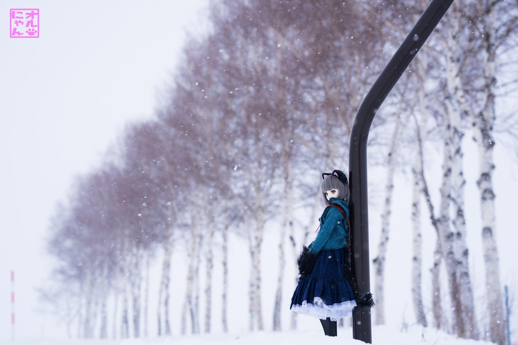 美瑛のポプラ並木 | bottlefairy | Flickr