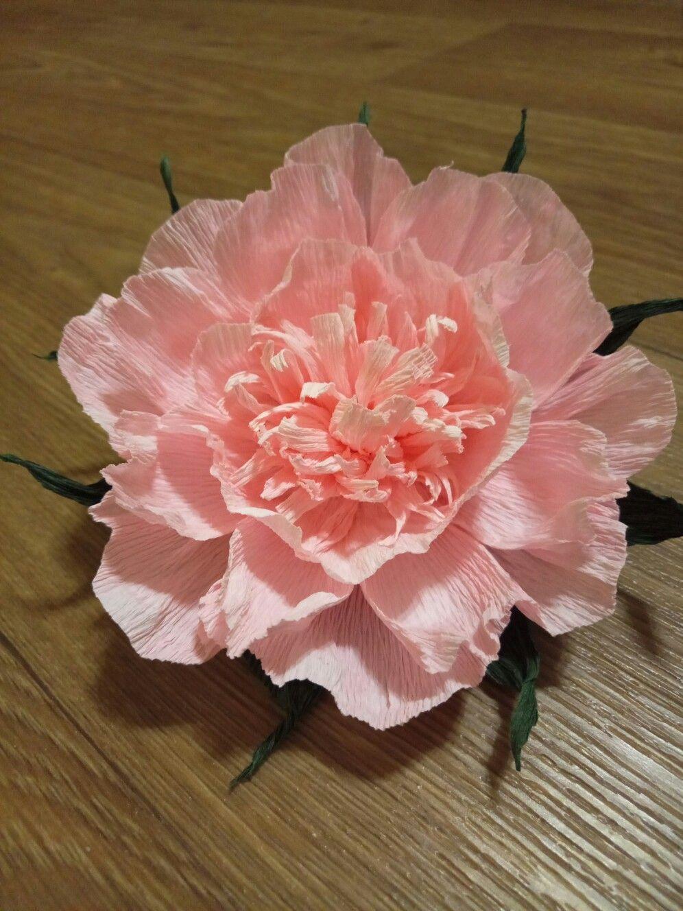 Цветы из бумаги. 🍧🍧🍧 | Цветы, Бумага, Розы