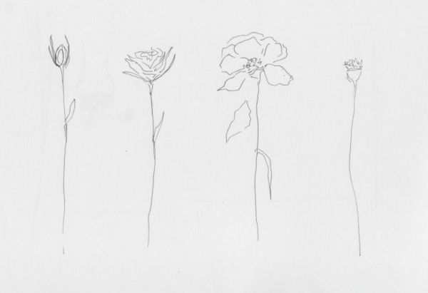 Pin By Lauren D On Art Flower Line Drawings Line Drawing Tattoos Flower Spine Tattoos