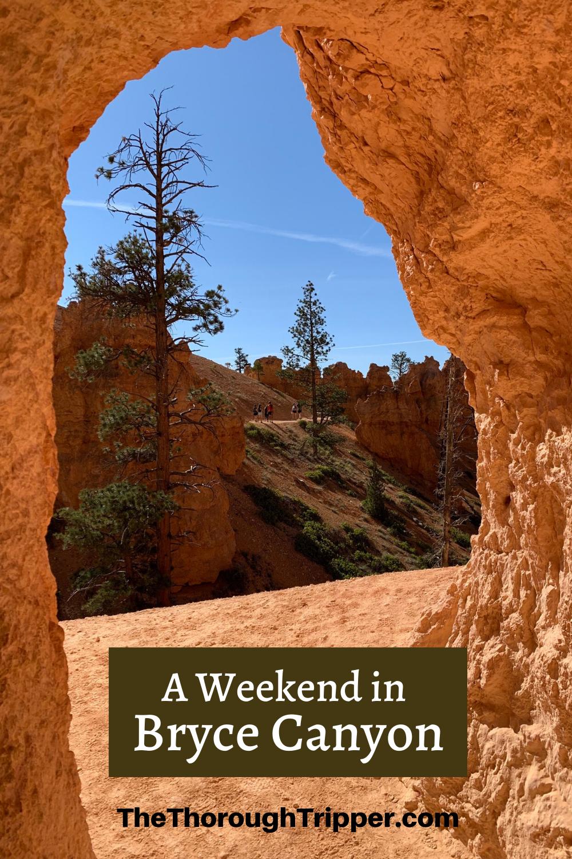 Bryce Canyon National Park - a Utah Treasure!