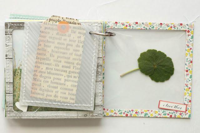 beach mini album: a collection of treasures
