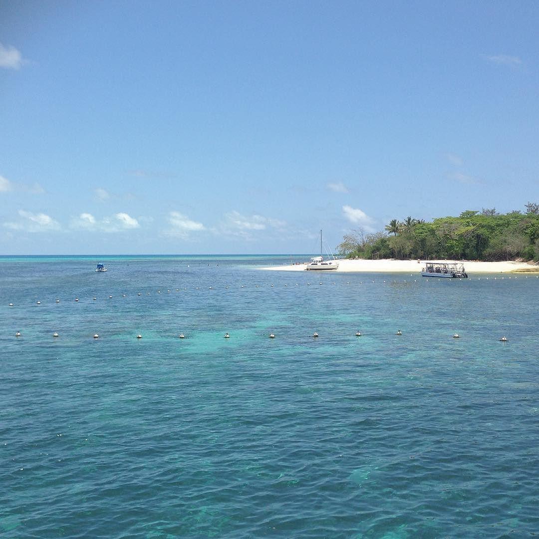 Flexible office half a day on Green Island.  #greenisland #greatbarrierreef #reef #island #coral #swimming #snorkel #beach #strand #palm #palmtree #sandcay #ocean #cairns #farnorth #fnq #queensland #australia by elinalexi http://ift.tt/1UokkV2