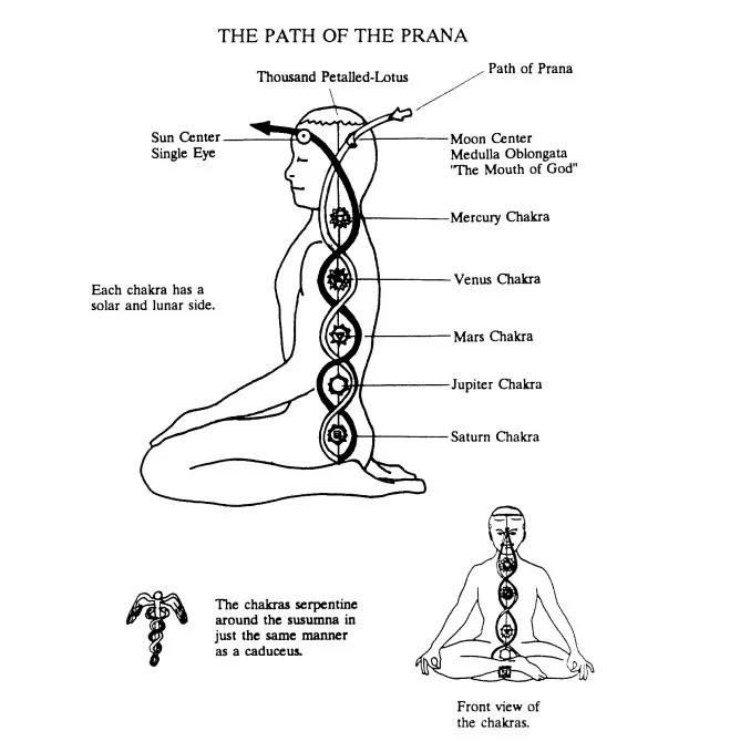 The Path Of Prana Chakra Page From The Spiritual Science Of Kriya Yoga Chakras Kriya Yoga Kundalini Meditation Kundalini Mantra