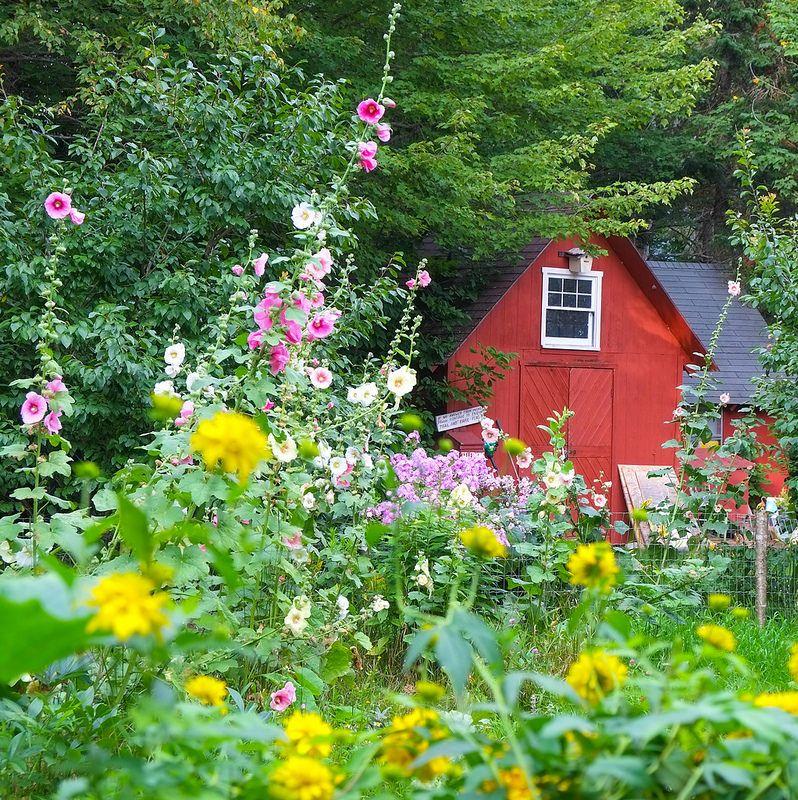 Little Red Barn in Maine Jordan Savage epantry