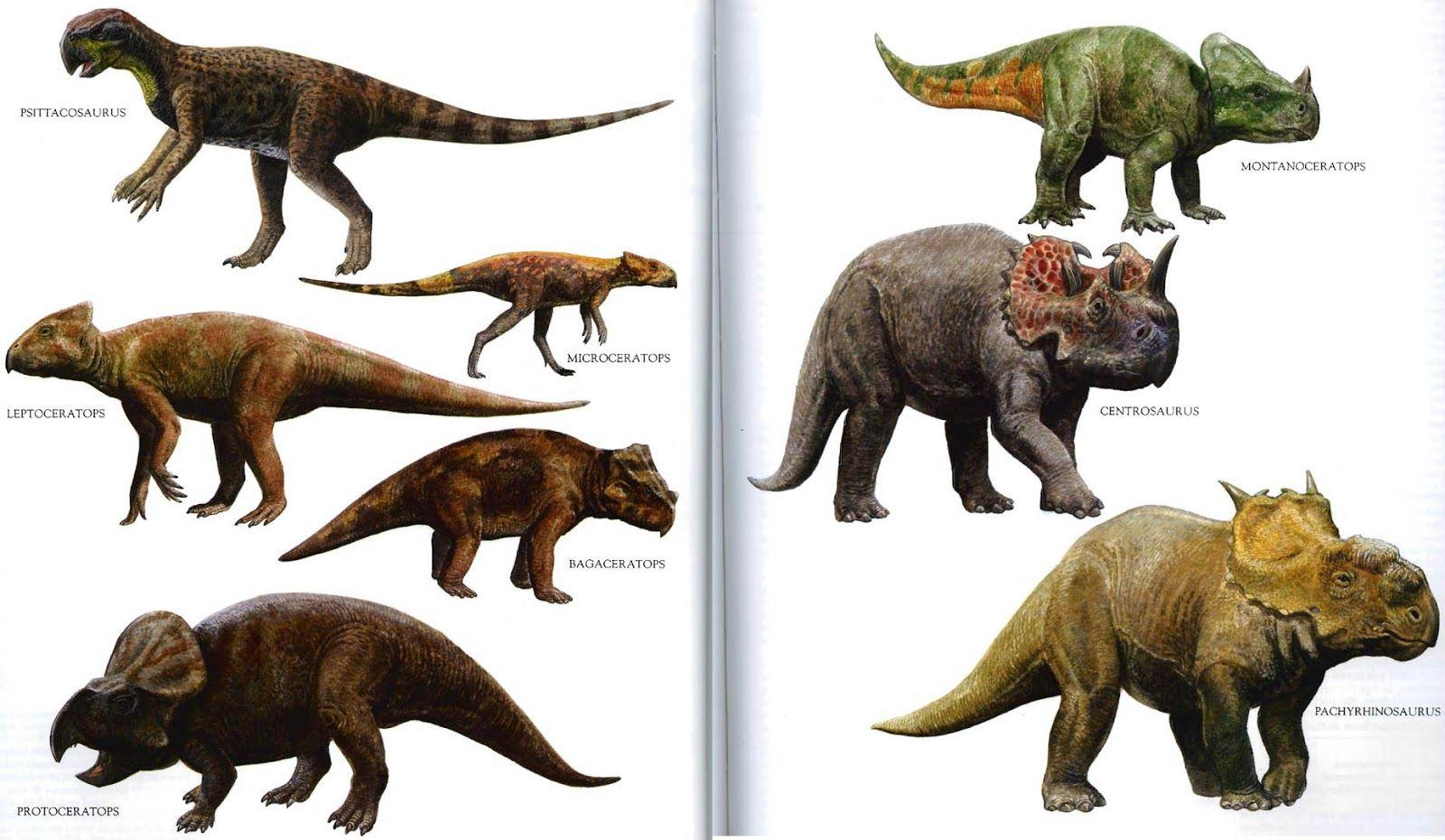 صور ديناصور انواع الديناصورات بالصور Dinosaur Prehistoric