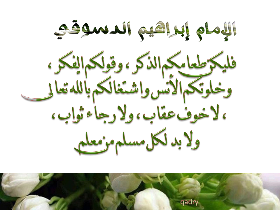 إحتفالية سيدى إبراهيم الدسوقى B73698773f5827dd7f9e0471594346de