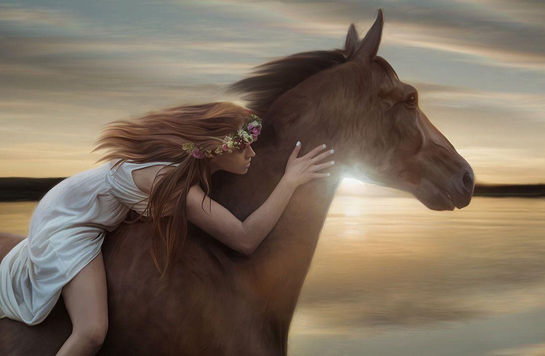 Image Result For جمال الخيل العربية الأصيلة Wild Horses Running Horses Wild Horses