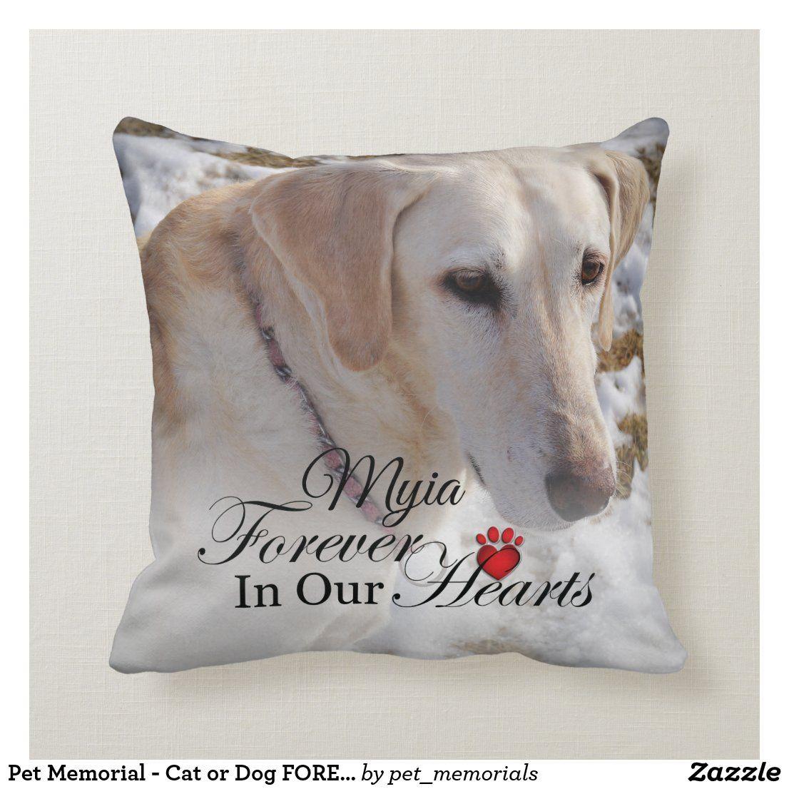 Pin On Pet Memorials