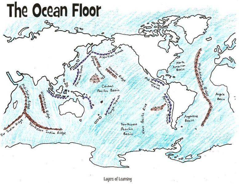 Ocean Currents Ocean Floor Ocean In A Bottle Craft And Ocean Lapbook Layers Of Learning Unit Studies Homeschool Layers Of The Ocean Ocean Projects