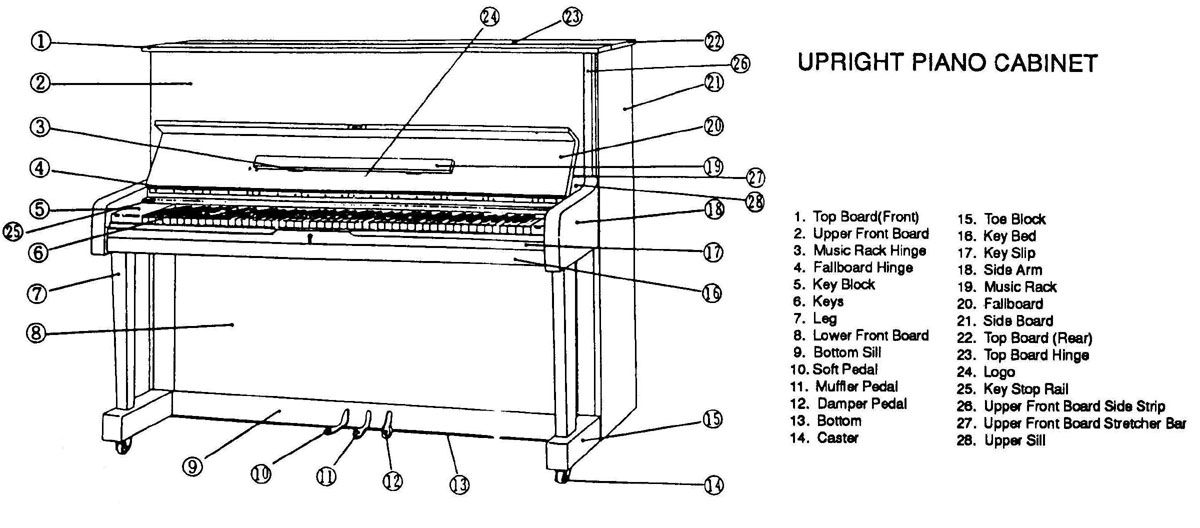 labelled diagram grand piano google search piano pinterest rh pinterest com piano chords diagram free piano chords diagrams printable