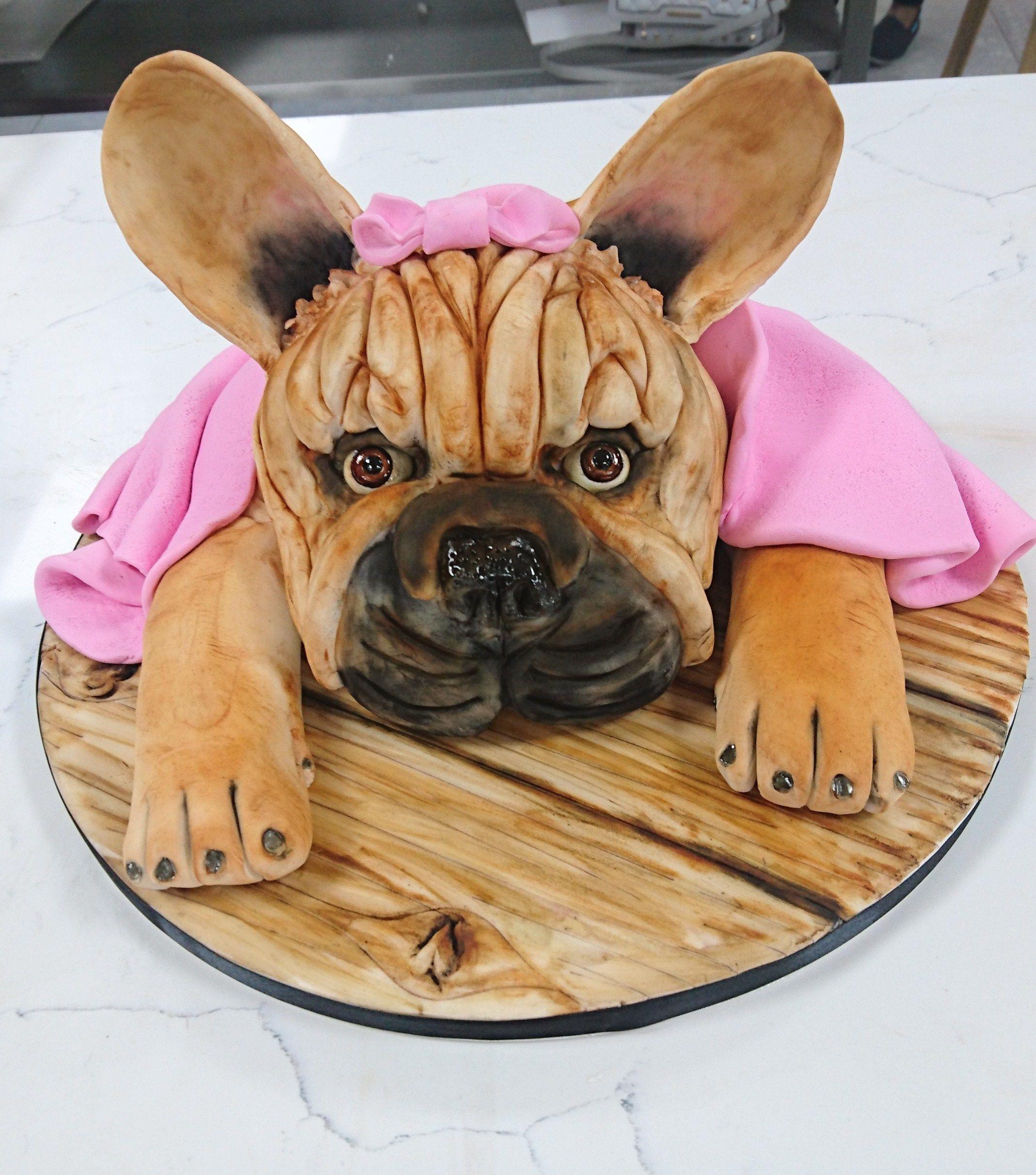 French bulldog cake in 2020 bulldog cake special